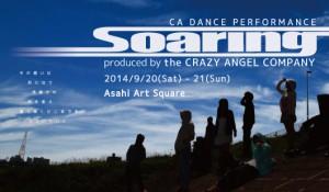 soaring-banner